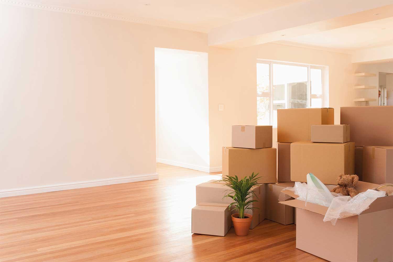 boxes kept together