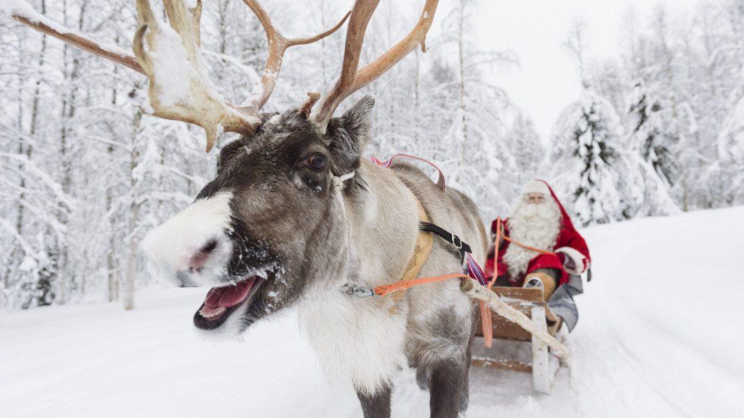 santa in reindeer sled